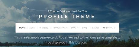 Header - Profile Theme