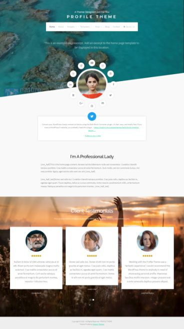 Organic Themes – Profile : Personal Resume WordPress Theme