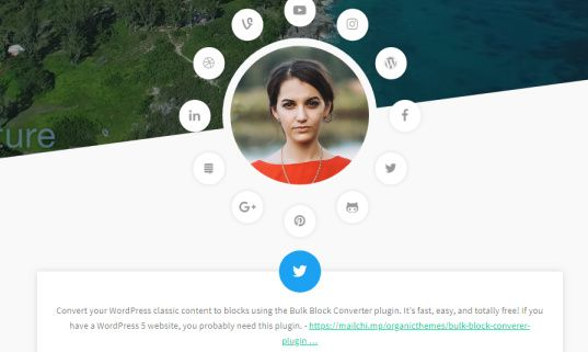 Social Links and Author Image - Organic Themes