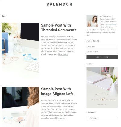 Splendor - Best Blogging Theme