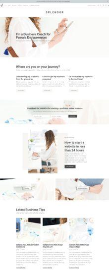 Splendor Demo - WordPress Genesis Blogging Theme by Restored 316