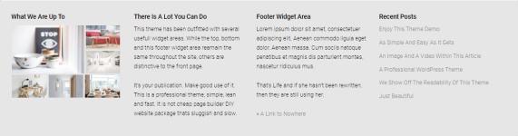 Footer Widgets - Rich Magazine Theme