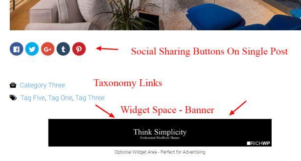 Video Blog Widget Banner and Social Sharing Options