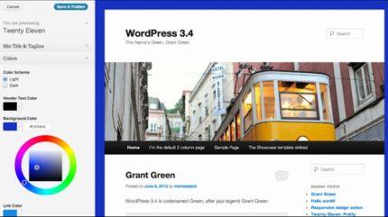 WordPress Customizer Options