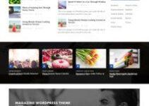 PublishNow – HappyThemes Reviews Best Magazine WordPress Theme