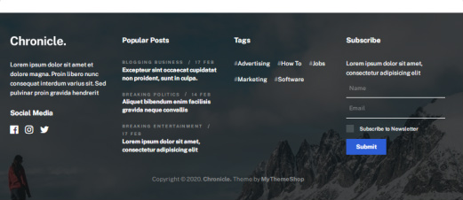 Chronicle Footer Widgets