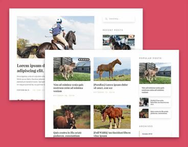Saddle Blog for Horse Riding Schools