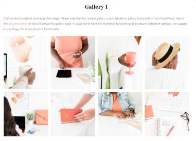ChicBoss Gallery Theme