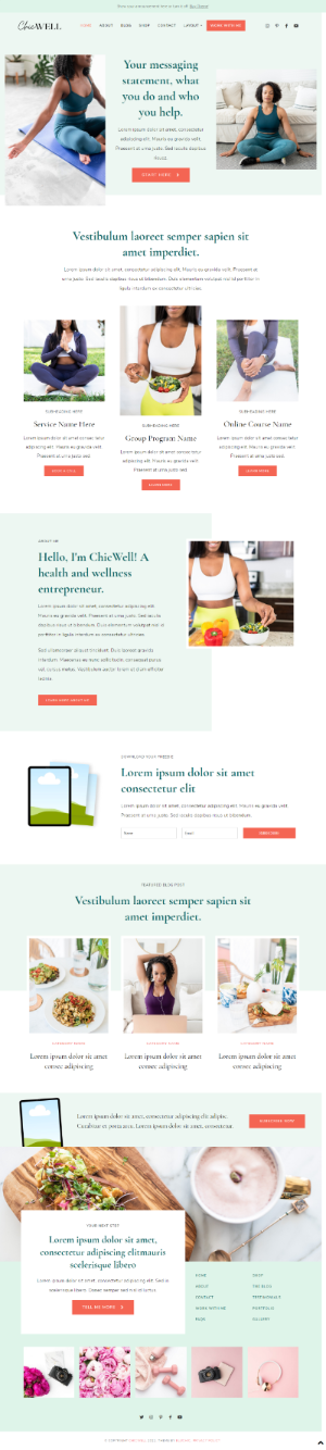 ChicWell WordPress Theme - Bluchic