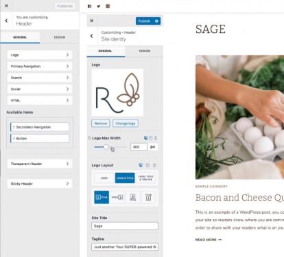 Sage Theme Options - Customizer