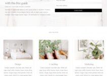 Farmhouse Demo Restored 316 – Best Genesis Child Blogging