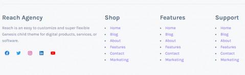 Footer Widgets - Mai Reach Business Theme