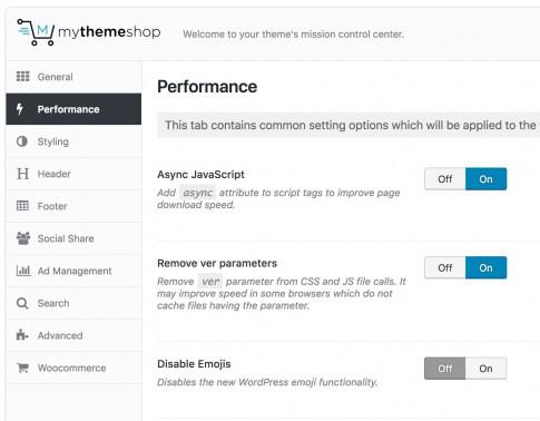 Theme Options - Technologist WordPress Theme