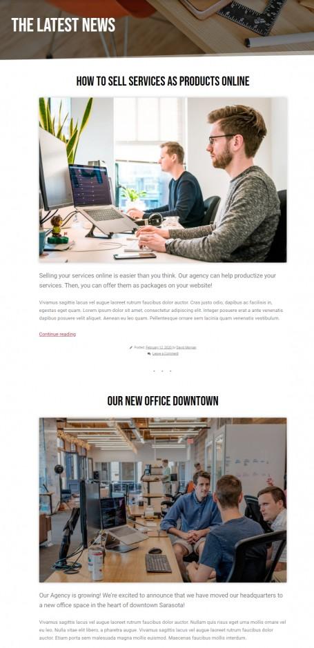Blog Options - Agency Theme