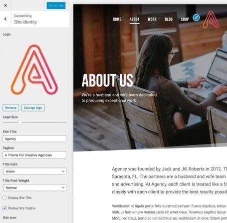 agency-theme-customizer