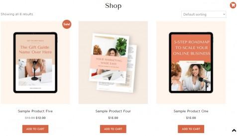 Shop Page - ChicSavvy WordPress Theme
